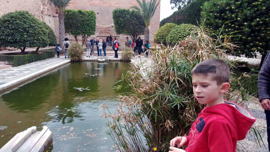 Miguel+actividad+visita+alcazaba+almeria+abril+2017+asociacion+autismo+darata